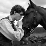 a horse and a young man