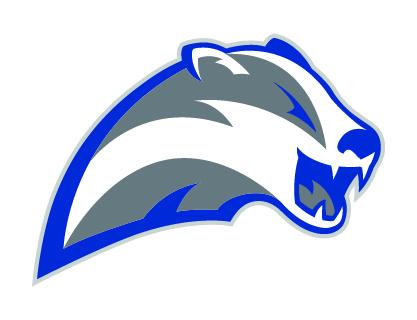 The New Badger Logo