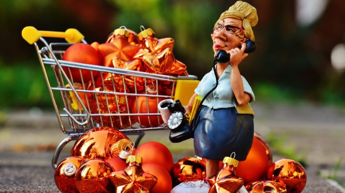 a woman shopping for thanksgiving